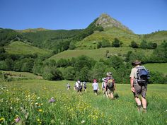 Walking holiday in Auvergne