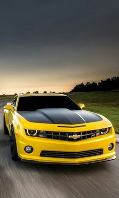 I absolutely prefer this paint color for this black matte chevy camaro Luxury Sports Cars, Cool Sports Cars, Best Luxury Cars, Chevrolet Camaro, Camaro Car, Bugatti, Maserati, Bmw Sport, Sport Cars