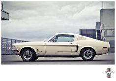 Men's Cars Series _ My car's called Steve by Laurent Nivalle, via Behance