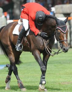 Couldn't resist pinning my favourite shot of Eric Lamaze and Hickstead.