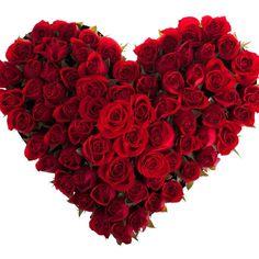 Rose hearth
