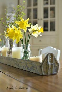 ~Darling Daffodil Cottage~