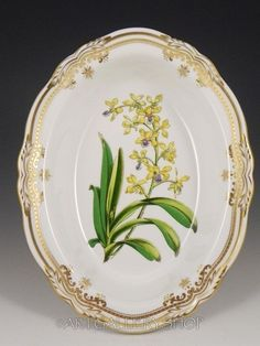 """Spode England (Bone) STAFFORD FLOWERS 9-1/2"""" OVAL VEGETABLE SERVING BOWL Mint 