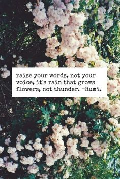 beautiful. 'raise your words, not your voice, it's rain that grows flowers, not thunder'. / ONEDOZENREASONS.