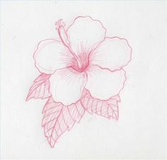 How to Draw Hawaiian Flowers | How to Draw Hawaiian Flowers Step by Step | eHow