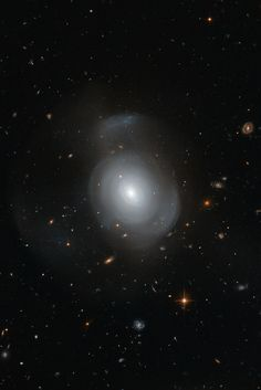 The White Rose Galaxy