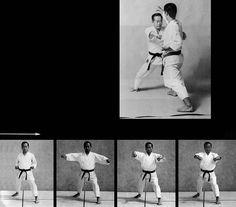 Chūdan hasami zuki Karate, Polaroid Film