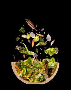 Modernist Cuisine At Home http://modernistcuisine.com/books/modernist-cuisine-at-home/