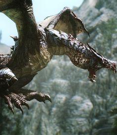 Dragon - Skyrim
