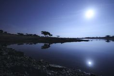 Today's Earth Science Picture of the Day is a wonderful nightscape from Juromenha in Alentejo's Alqueva Dark Sky Reserve.  Via Earth Science Picture of the Day | 8/11/2012  The photo above showing the waning, gibbous Moon and a moonlit landscape was taken from Juromenha, Portugal, in the Alqueva´s Dark Sky Reserve. This reserve was the world's first starlight tourism destination.   #Portugal