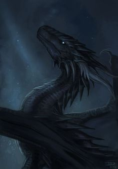 Image result for good black dragon