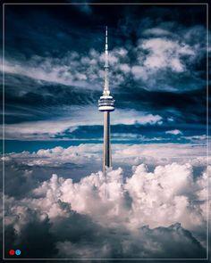 Toronto Toronto Skyline, Toronto City, City Iphone Wallpaper, Toronto Photography, Ottawa Canada, Landscape Concept, Big Tree, Birds Eye View, Canada Travel