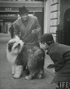 """Famous People with Their Dogs on the Street of NYC in 1944 Music conductor Andre Kostelanetz w. his sheep dog """"Puff"""" getting attention fr. a young admirer on the street.All photos are taken by LIFE photographer Nina Leen in 1944."""