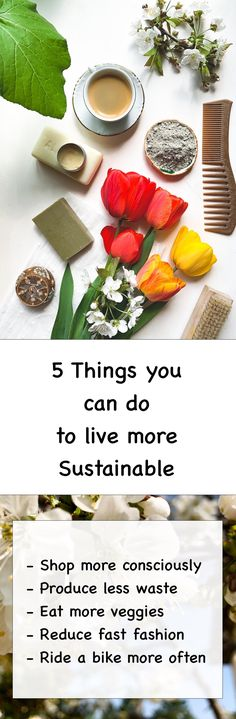 We have 5 things you can do to live a more sustainable and eco-friendly life! Check out our post and see what you can do to save the planet.