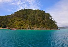 The Bay of Islands was made for boat tours