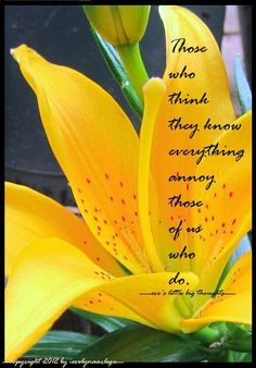 Those who think they know everything annoy those of us who do. (-eve's little big thought-)
