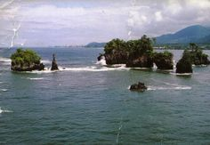Limbe, Cameroon...I can't wait to go back someday