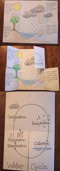 Water Cycle Foldable. need to use with 6th grade...notice how the book…