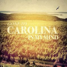 Carolina~ i now realize how lucky i am to live in NC