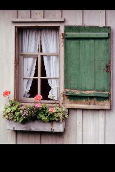 window box- loving the rustic shutter