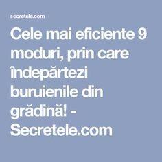 Cele mai eficiente 9 moduri, prin care îndepărtezi buruienile din grădină! - Secretele.com