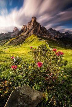 Colección de paisajes (en buena calidad)