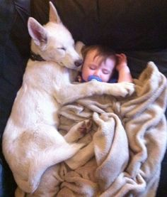 this could be my dog and baby boy <3