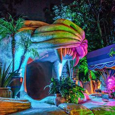 Aladdin's Oasis | 29 Magical Places At Disney You Never Knew You Could Get Married This magical Disneyland venue recently held its first wedding. Available outside of park hours, this locale is a perfect recreation of Agrabah, complete with bustling market and the Cave of Wonders.