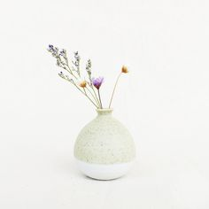 Mini Vase 5 cm - Pastel Green, oh! Still Life Photography, Ceramic Vase, Dried Flowers, Pastel, Pottery, Ceramics, Texture, Mini, Green