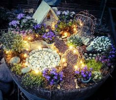 Fairy Garden... Mom would love this...