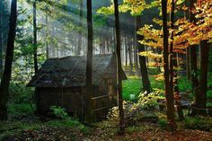 Abandoned wooden forest house World HD desktop wallpaper, Tree wallpaper, House wallpaper, Wood wallpaper, Forest wallpaper - World no. Forest Cottage, Forest Cabin, Mountain Cottage, Forest House, Cozy Cottage, Cottage Style, Beautiful Forest, Beautiful Places, Peaceful Places