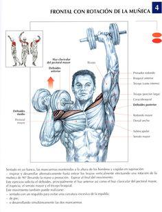 Mejores ejercicios hombros gym