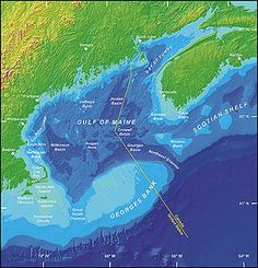 A bathymetric map of the gulf of Maine.