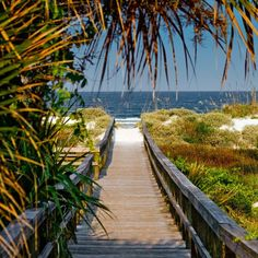 This is where I will be in 23 days!  St. Augustine Beach, Florida
