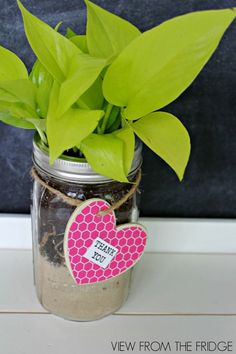 DIY Mason Jar Gift Ideas are simple and fun. Here's a great project you can give as gift to a teacher, for a housewarming or thank you gift all year round. Mason Jars, Mason Jar Gifts, Homemade Gifts, Diy Gifts, Jar Crafts, Crafts For Kids, Teacher Appreciation Gifts, Teacher Gifts, Cool Diy Projects