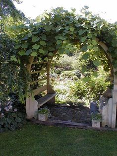 moon gate arbor with 2 bench seats, surrounded with climbing plants Thinking about sprucing up your garden and out of ideas? We have more than 31 arbor ideas for you to choose from. Check our article now! Grape Arbor, Garden Pictures, Garden Structures, Outdoor Structures, Garden Gates, Garden Entrance, House Entrance, Garden Arches, Dream Garden