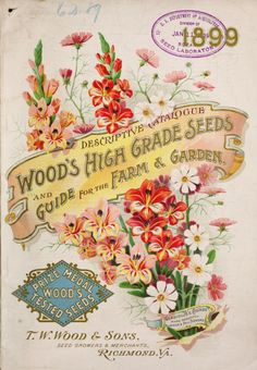Front cover of 'Wood's High Grade Seeds and Guide for the Farm and Garden' with an illustration of Gladiolus and Cosmos. Descriptive catalogue 1899. T. W. Wood & Sons, Seed Growers and Merchants, Richmond, Va.U.S. Department of Agriculture, National Agricultural Libraryarchive.org