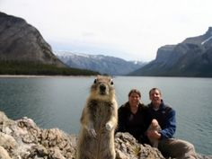 This is so cute.....little guy photo bombs couples timer photo! Perfect timing.