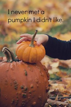 I do love pumpkins!