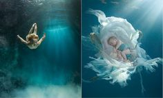 Amazing underwater photography by Zena Holloway - My Modern Metropolis