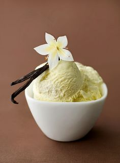 Serious Vanilla Ice Cream (Recipe from Alton Brown)
