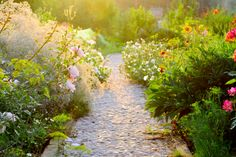 Charming Ideas to Create a Stunning Cottage-Style Garden - Reliable Remodeler