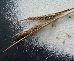 The Baking Pantry: Flour - A brief guide to different types of wheat-based flour at Baking.Answers.com @Answers in Genesis.com