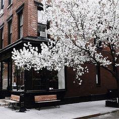 New York City, Heaven on a street.