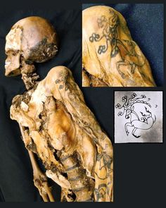 """👇This year-old female mummy dubbed the """"Altai Princess"""" or the """"Ice Maiden"""" is one of few in existence with visible tattoos. The preserved skin has the mark of an animal-style deer tattoo on one of her shoulders, and another on her wrist and thumb. Body Art Tattoos, Tatoos, Tattoo Art, Pop Culture News, Year Old, Best Funny Pictures, Tattoos For Women, Henna, At Least"""