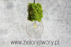 www.studio-62.pl #furniture #interiordesign #design #interior #accesories #architrcture #decoration #homedecor #metal #metalove #insta #architecture #productdesign #graphics #follows #instafollow #green #ecology #green #greenwall #greendesign