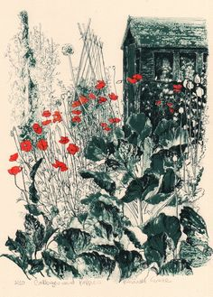 'Cabbages and Poppies' by Pamela Grace