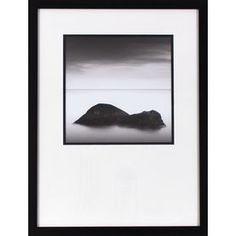 1-Piece 19.5-In W X 25.5-In H Framed Plastic Photography Print Wall Ar