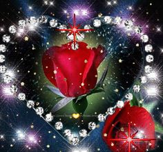 To my dear Joe ❤always in my heart 💔💘 Beautiful Love Pictures, Love You Images, Beautiful Roses, Beautiful Flowers, Benfica Wallpaper, Sweet Dreams My Love, Light Blue Roses, Blue Suit Wedding, Good Night Greetings