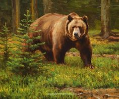 New and available wildlife artwork by Kyle Sims. Bear Paintings, Wildlife Paintings, Wildlife Art, Bear Watercolor, Watercolor Animals, Bear Pictures, Animal Pictures, North American Animals, Animal Art Prints